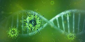 coronavirus en scouting